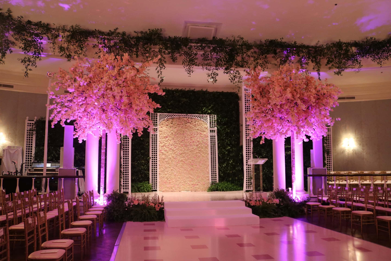 Cherry Blossom Trees Swift Company